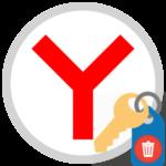 Как удалить все пароли в Яндекс.Браузере
