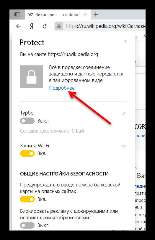 Окно Protect в Яндекс Браузере
